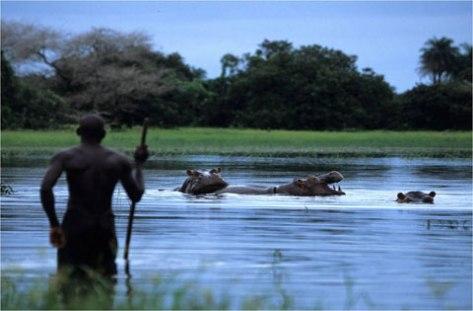 Reserva Natural en Guinea Bissau.