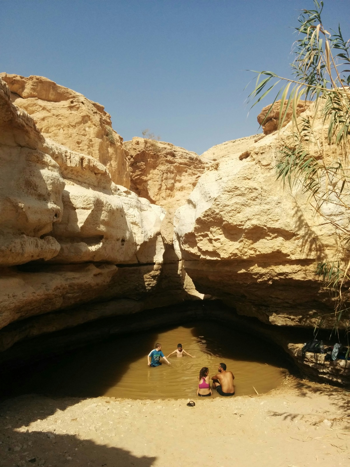 El Oasis en medio del desierto...